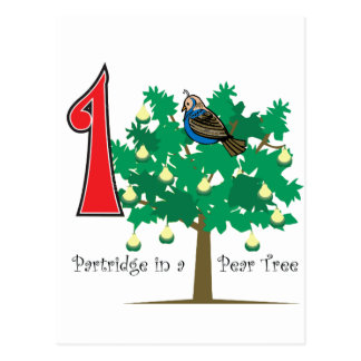 A Partridge in a Pear Tree Postcard