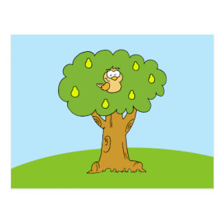 A Partridge in a Pear Tree Postcard