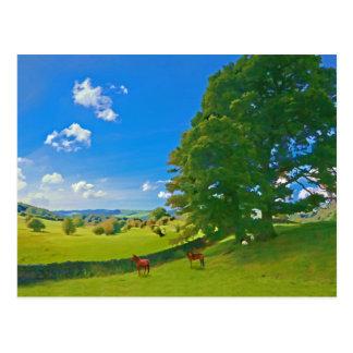A Pastoral landscape Postcard