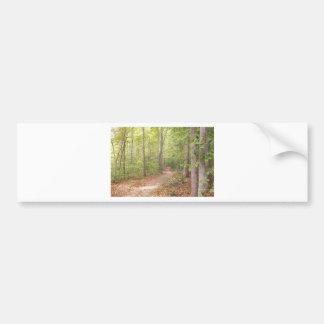 A path in the woods bumper sticker