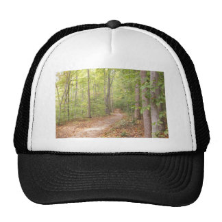 A path in the woods trucker hat