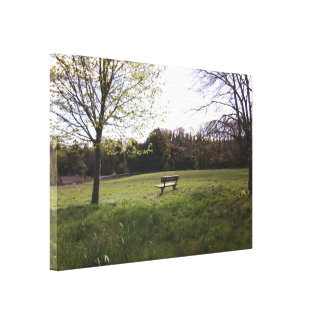 A Peaceful Open Space Canvas Print