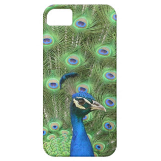 A Peacock Case-Mate iPhone 5 Case. iPhone 5 Cover