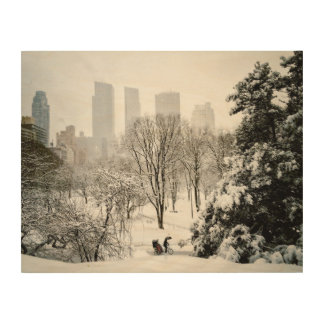 A Pedicab in Central Park During Winter Wood Wall Decor