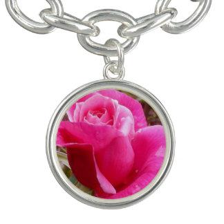 A Perfect Deep Pink English Rose