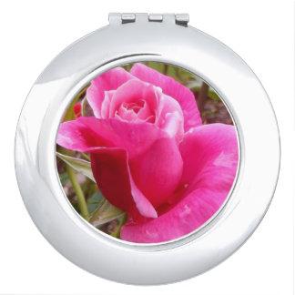 A Perfect Deep Pink English Rose Makeup Mirrors