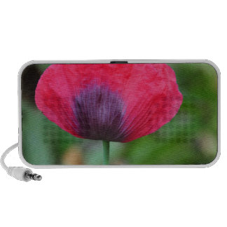 A perfect poppy flower portable speakers