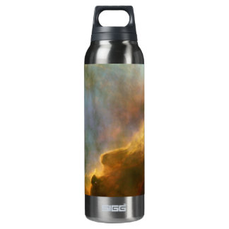 A Perfect Storm of Turbulent Gases in the Omega 0.5L Insulated SIGG Thermos Water Bottle
