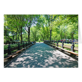 A Perspective on Central Park Card