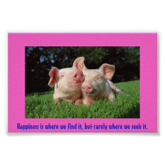 A pigs life posters