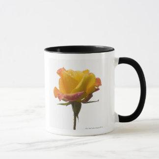 A pink and yellow rose after an afternoon rain mug