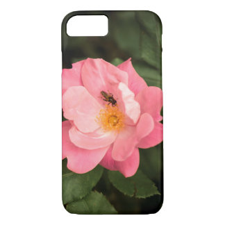 A pink rose and the fly insect iPhone 8/7 case