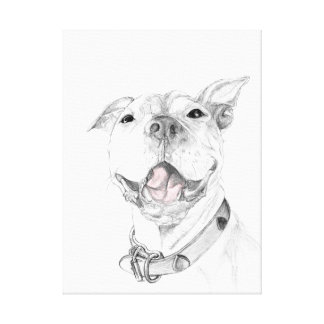 A Pit Bull Smile Gallery Wrapped Canvas