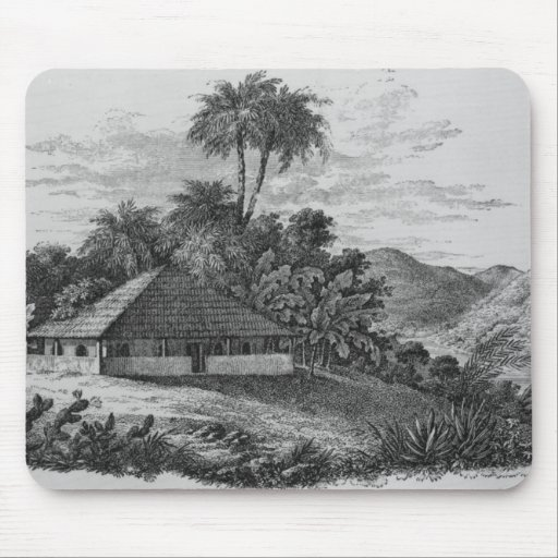 A Planter's House in Brazil Mouse Pad
