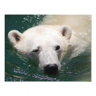 A polar bear just chilling card