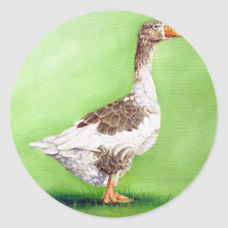 A Portrait of a Goose Classic Round Sticker