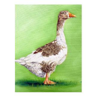 A Portrait of a Goose Postcard