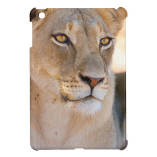 A portrait of a Lioness looking into the distance iPad Mini Cover