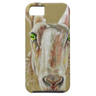 A portrait of a sheep iPhone 5 case
