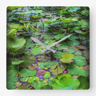 A pretty pond full of lily pads at a water temple square wall clock
