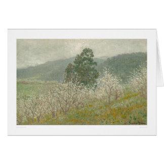 A Prune Orchard, Saratoga, California (1170) Card