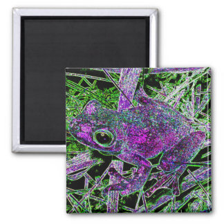 A Purple Frog in the Court Yard of Wonders Magnet