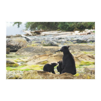 A quality Wildlife canvas print with wrapped edges
