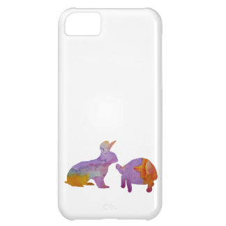 A rabbit and a tortoise iPhone 5C case