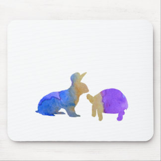 A rabbit and a tortoise mouse pad