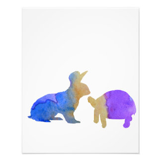 A rabbit and a tortoise photo print