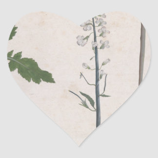 A Radish Plant, Seed, and Flower Heart Sticker
