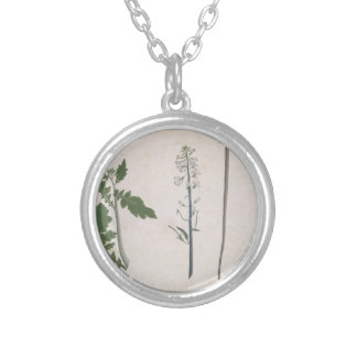 A Radish Plant, Seed, and Flower Silver Plated Necklace