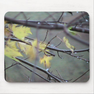A Rainy Morning In Autumn (Fall) With A Light Bree Mouse Pad