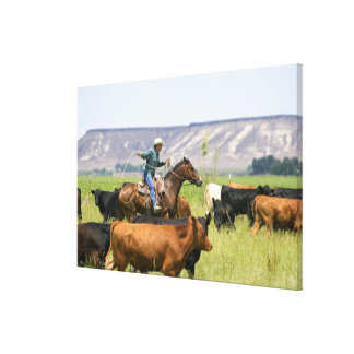A rancher on horseback during a cattle roundup gallery wrap canvas