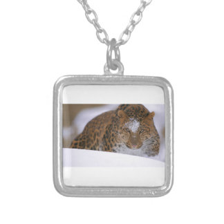 A Rare Amur Leopard Peers Over a Snowy Embankment. Silver Plated Necklace