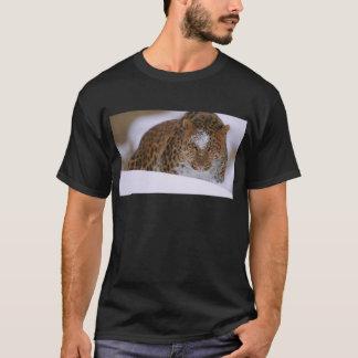 A Rare Amur Leopard Peers Over a Snowy Embankment. T-Shirt