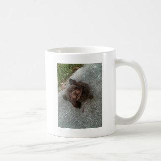 A Real Mogwhy! Mug