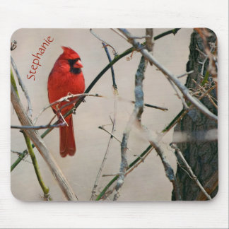 A Red Cardinal Bird on a Branch in the Woods Mouse Pad