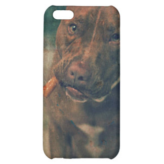 A Red Nose Pit Bull Chewing a Cigar Cover For iPhone 5C