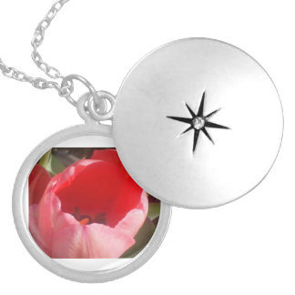 A Red Tulip In The Morning Locket Necklace