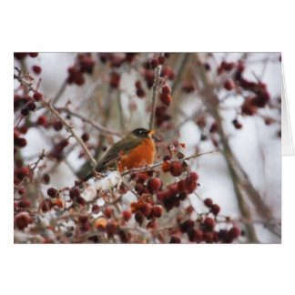 A Robin Greeting The Winter Season Card