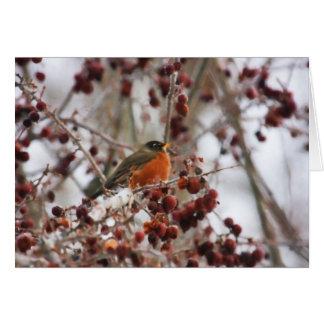 A Robin Greeting The Winter Season Greeting Card