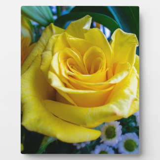 A rose by any other name plaque