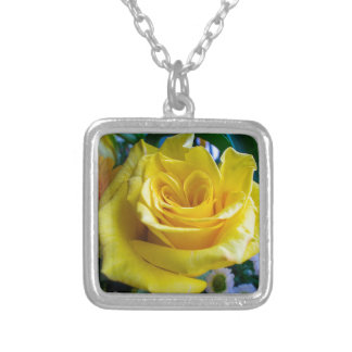 A rose by any other name silver plated necklace