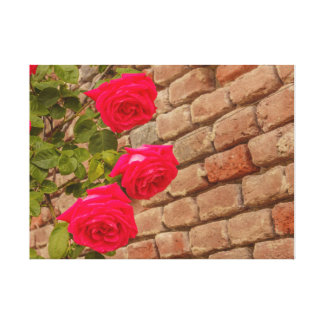 a roses climb on a brick wall canvas canvas print