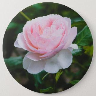 A roses garden 6 cm round badge