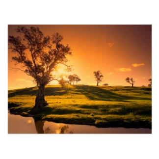 A rural Adelaide Hills landscape Postcard