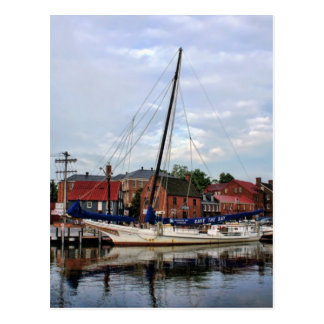 A Sailboat in Annapolis Harbor Postcard
