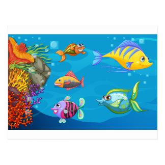 A school of fish under the sea postcard