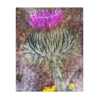 A Scottish Thistle Canvas Print